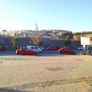 Petit-taxis, Entrada De Fez