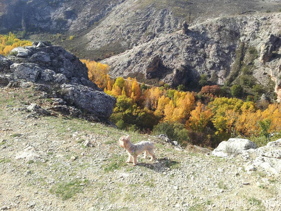 vista del cañón del río Dulce desde el sendero