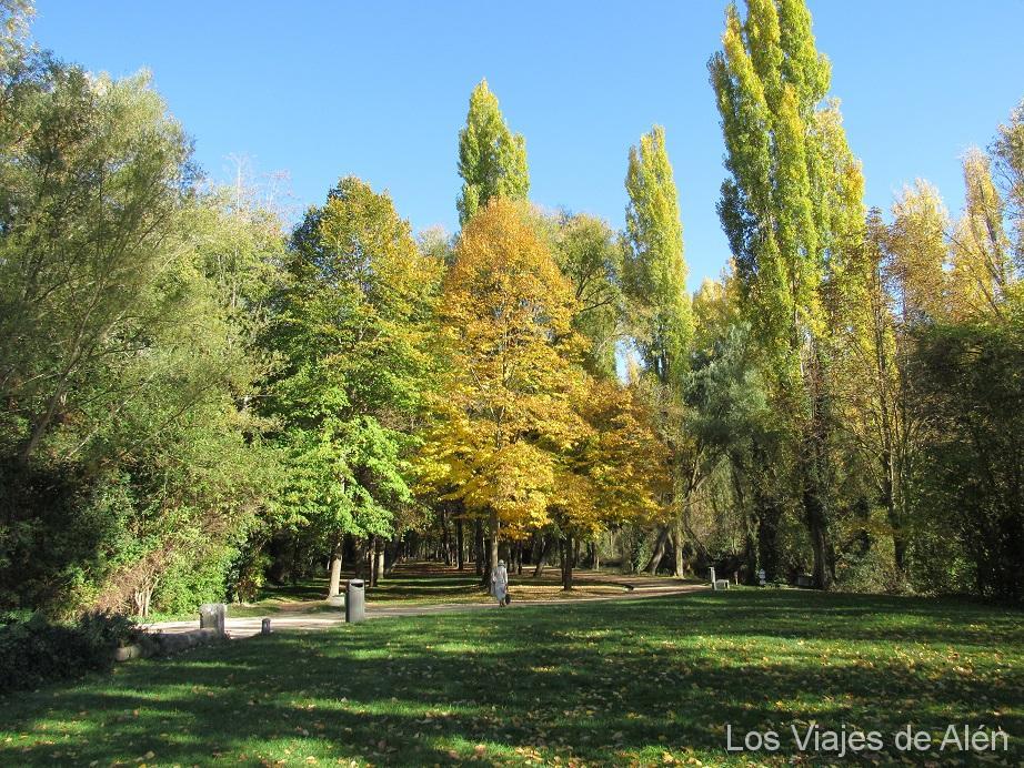 Los Colores De Otoño Pintan Los árboles Del Parque De La Alameda