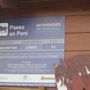 Precios Paseo En Pony