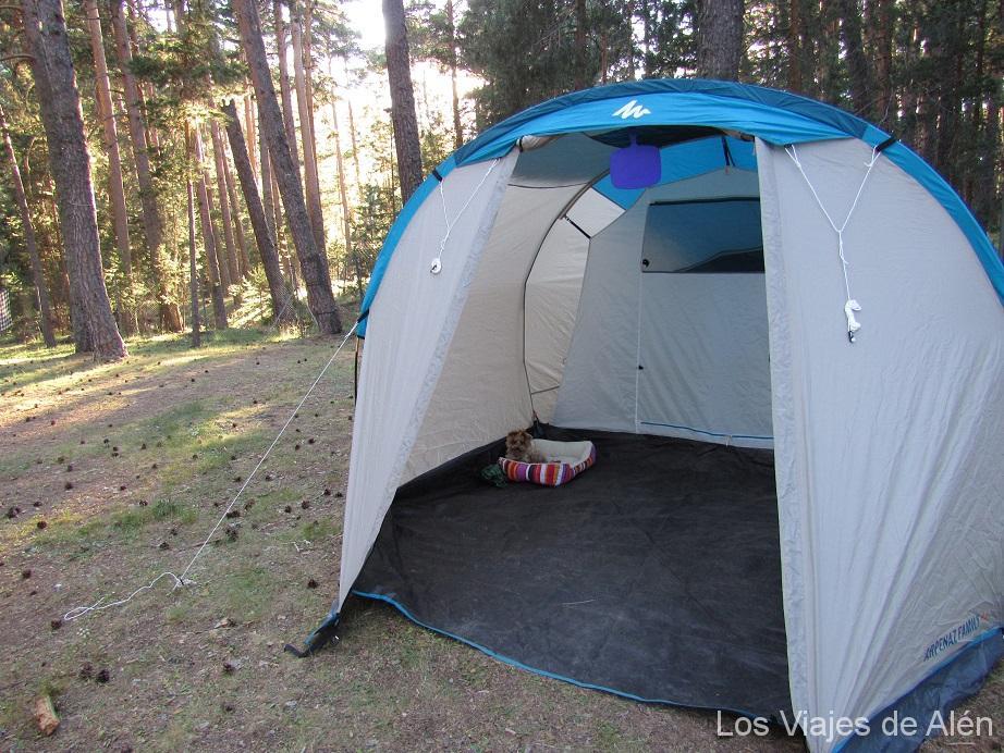 Camping Orea (Guadalajara)