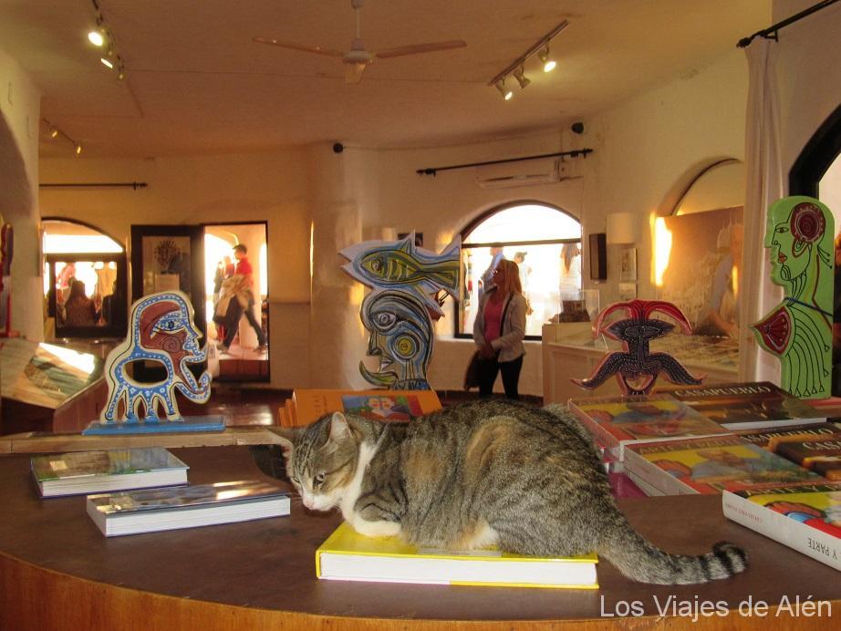 Gato En El Museo